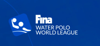 FINA_Cup2018